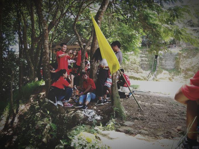 Summer ☀ Yellow Flag Red Shirt Tree