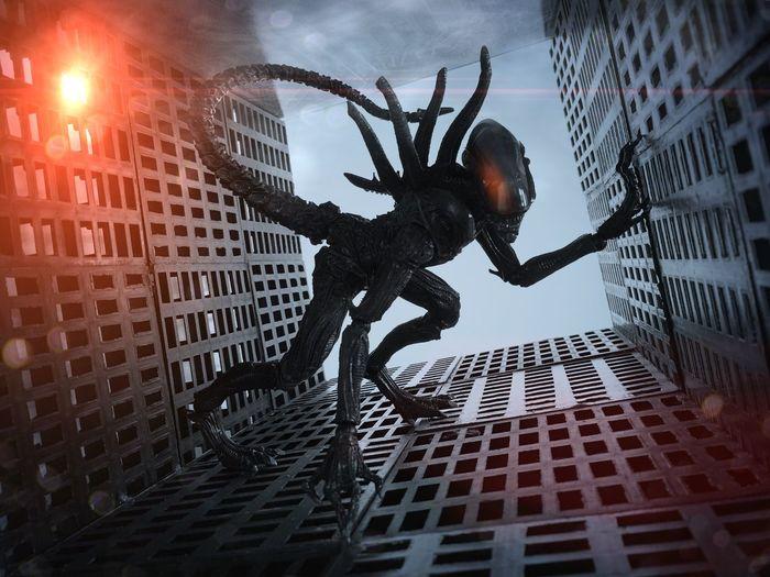 AlienDay426 Alien