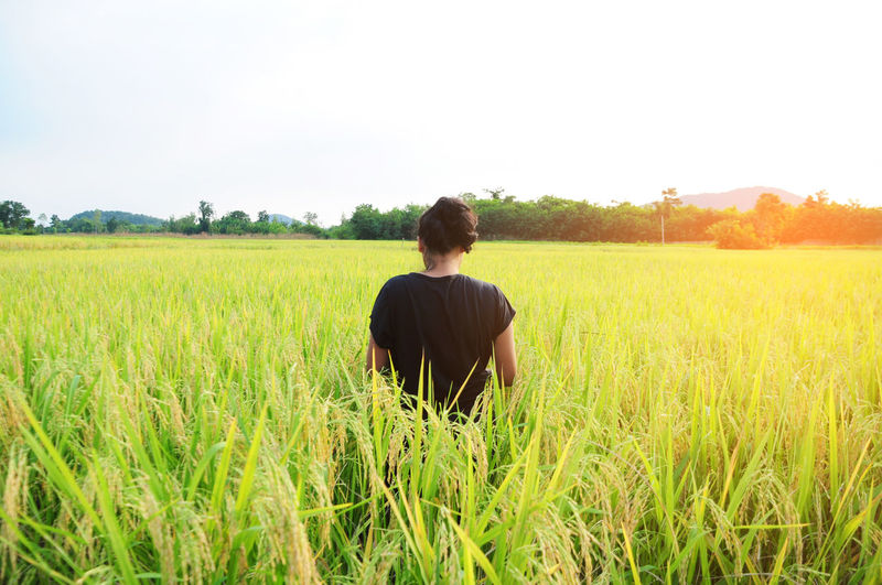 Rear View Of Woman Standing Amidst Crops On Field Against Sky