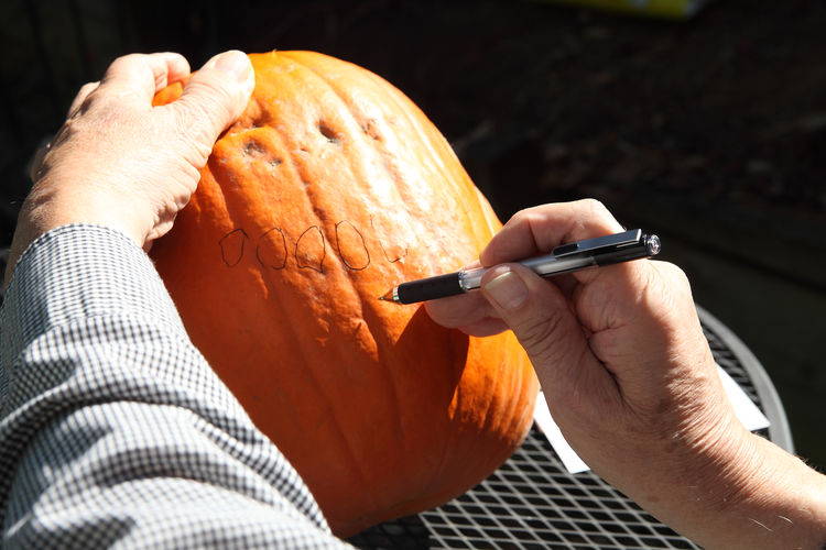 Designing face for Halloween pumpkin American Culture Craft Creative Drawing Fingers Halloween Hands Holiday Jack O'Lantern Leisure Activity Man Natural Light Outdoors POV Pumpkin Skill  Sunny Textures Traditional