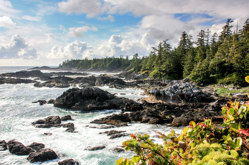 Adventure Beauty In Nature British Columbia Canada Idyllic Long Beach Nature Non-urban Scene Ocean Outdoors Pacific Rim Rock - Object Rugged Scenics Sea Tofino Tranquil Scene Tranquility Ucluelet Vancouver Island Water Wild Pacific Trail Wilderness Wilderness Adventure Wildernessculture