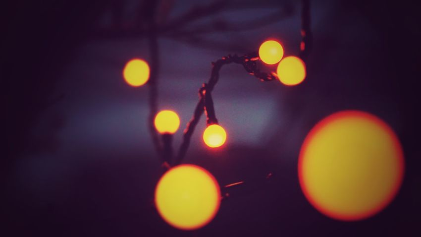 Off focus light bulbs Close-up No People Illuminated Indoors  Freshness Day