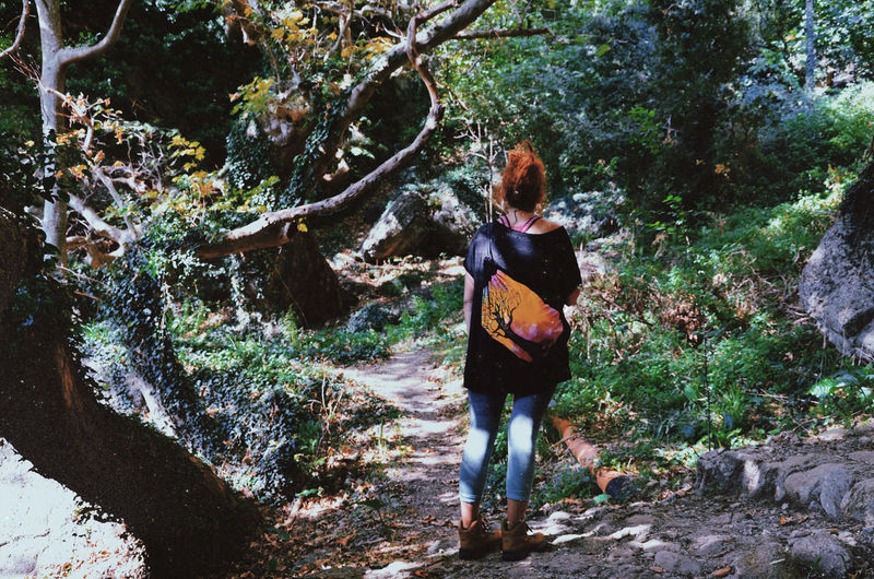 Rear view of woman standing amidst trees in forest
