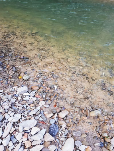 Calm, cool, clear and reviving. Borneo Beauty In Nature Day Nature No People Outdoors Pebble Stream Tranquility Water