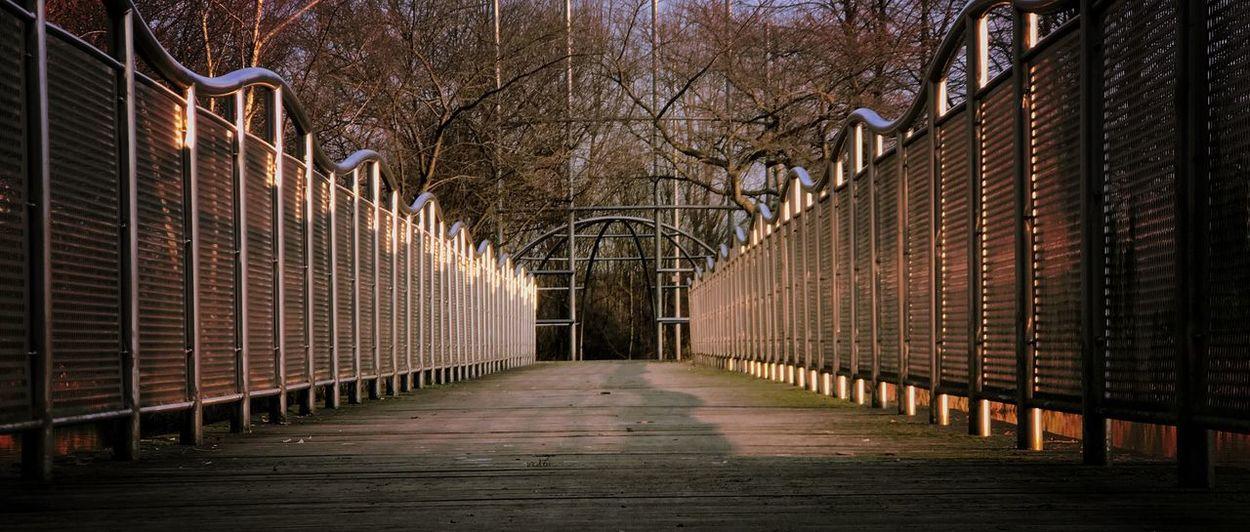 going forward Goodlight Railing The Way Forward Outdoors Tree Footbridge Built Structure