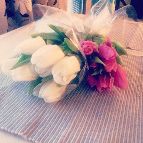 Flowers for the weekend! Springmode Tulips Flowers White babypink