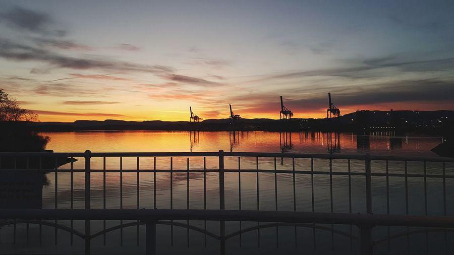 Cranes Oslo,