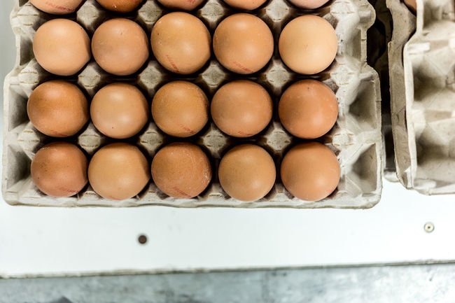 Egg geometry Part I Canon6d Close-up Directly Above Egg Egg Carton Eggs Eier Eye4photography  EyeEm Gallery Food Geometric Geometric Abstraction Geometry In A Row Indulgence Large Group Of Objects Raw Food