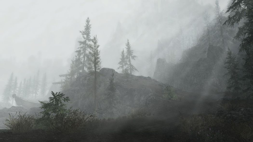 We take photos more than we play the games... Fog Tree Nature No People Forest Smog Water Outdoors Pine Tree Beauty In Nature Mountain Gaming Skyrim XboxOne Roleplay No Edit, No Filter, Just Photography Cold Temperature Landscape EyeEmNewHere