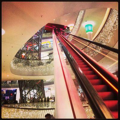 #germany #frankfurt #zeil #city #escalator #igers #igfamos #instgramm #instagood #shoping Igfamos Instgramm Escalator City Germany Frankfurt Shoping Igers Zeil Instagood