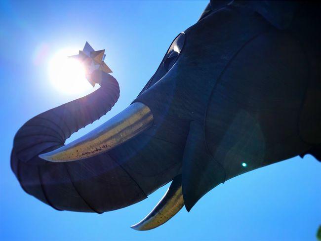 Elephant Elephant ♥ Sky Sunlight OITA ART MUSEUM Oita Oita-prefecture Oita,japan