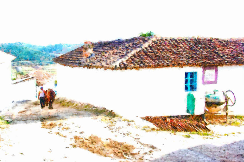 Man with horse goes down a street between the houses of the village of Malakastra Day Outdoors