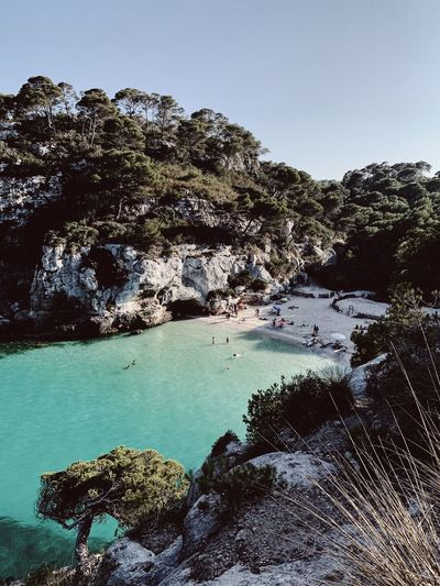 Island dream,