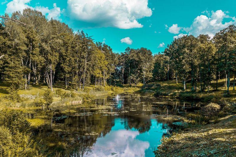 Eyeemphoto Trakai Lithuania Nature