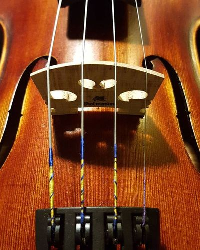 Wanting to completely restring because the E is odd 😢 Violin Violinstrings Perfectionist Itlooksodd Ifonlyiwassopassionateaboutpracticing Beautifulinstruments