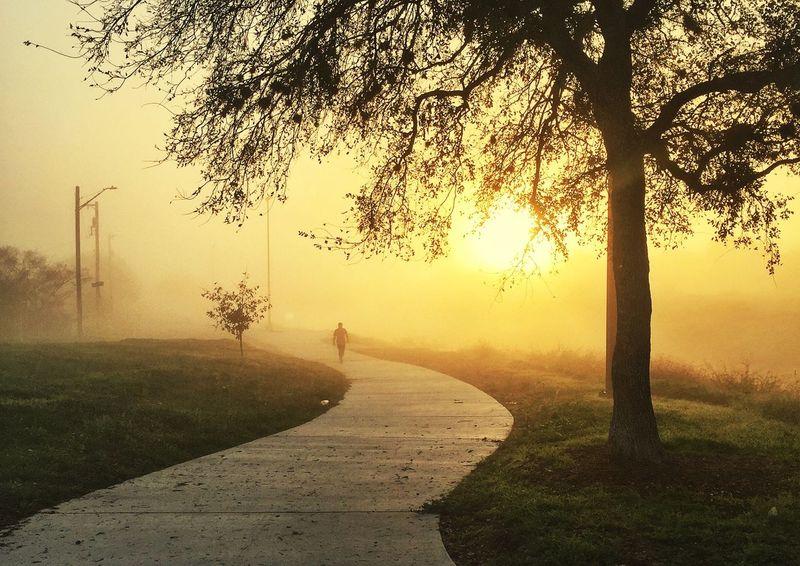Foggy sunrise. San Antonio, Texas From Xmas Vacation Feeling Thankful Happy Sunrise Sunrise_sunsets_aroundworld Sunrise_Collection Foggy Morning 43 Golden Moments