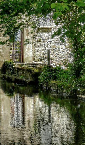 Old Ruins Taking Photos Celbridge Stone Nature Tree Hugging River View Water ReflectionEnjoying Life