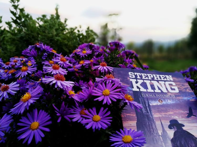 Purple life Flower Purple Outdoors Text Freshness Focus On Foreground Book Flower Head Stephen King No People Nature Fragility Gunslinger  Beauty In Nature Twilight Sky Reeding Till Midnight Reeding A Book Purple Flower Petal EyeEm Best Shots