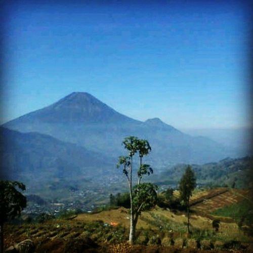BlueArea Mountain Natural Handmadeofgod Sempakninja