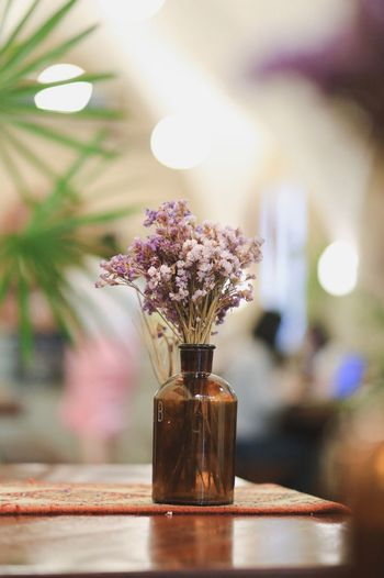 Close-up of purple flowers in vase on table