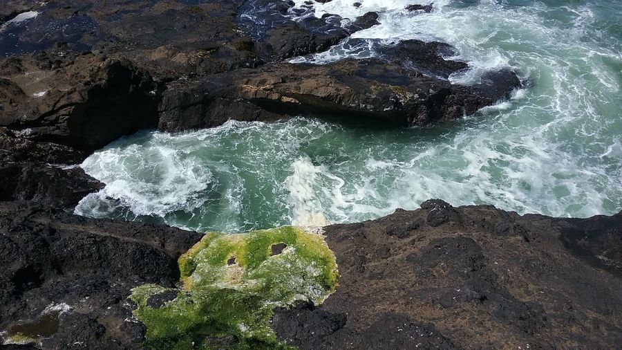 Lincoln City, Oregon Outdoors Beauty In Nature