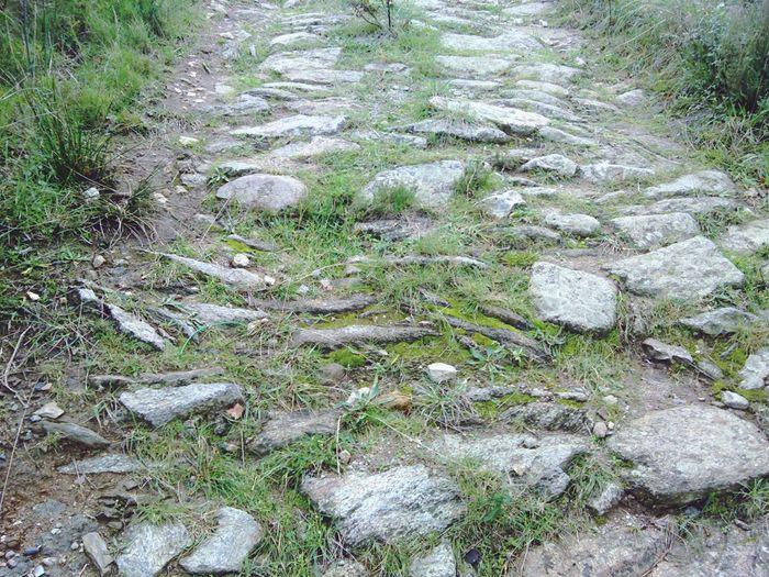 Camí Romà Cap A Sant Pere De Rodes