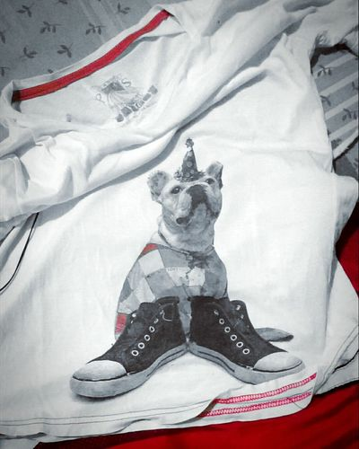 T-shirt Dogoftheday Dog Party Doglml Parcial Color White And Red