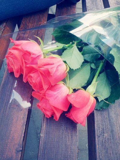 Present from Mina♥ Hi! Enjoying Life Hello World