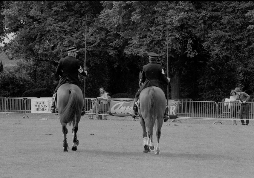 Horse Domestic Animals Working Animal Mammal Tree Horseback Riding Livestock Rear View Outdoors Riding Day Real People Men Full Length Nature Abbey Park Leicester Uk Leicester 1980s Film Photography Vintage History Police Mounted Police Cavalry Army
