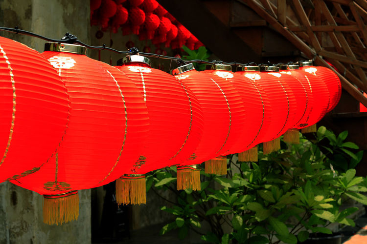 Red Lantern in Chinese style. Red Lantern For The Chinese New Year Architecture Chinese Lantern Chinese Lantern Festival Chinese New Year Close-up Day Decoration Festival Focus On Foreground Hanging In A Row Lantern Lighting Equipment Nature No People Outdoors Red Red Lantern Red Lantern Hot Pepper Red Lanterns China Red Lanterns For Chinese New Year Repetition Roof Text