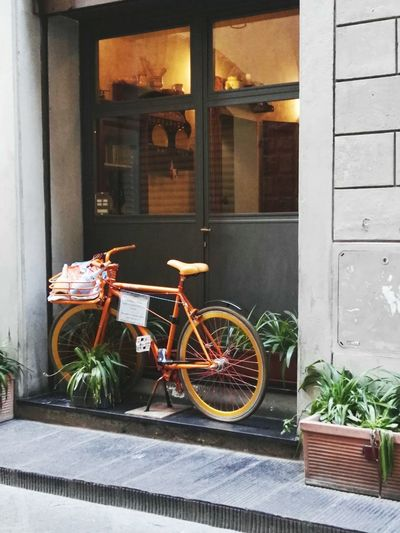 Orange Color Florence Beauty Vintage Vintage View Old But Awesome Old Old But Good Door Window No People Building Exterior Outdoors Day Bicycle Architecture