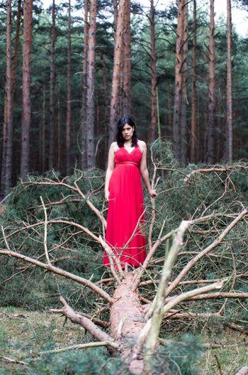 Portrait Of Woman Standing On Fallen Tree In Forest