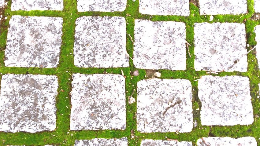 The persistence of moss is astonishing to me Relaxing Taking Photos Check This Out Geometric Shapes Urban 4 Filter Mossporn Stones Working Walkway Ground