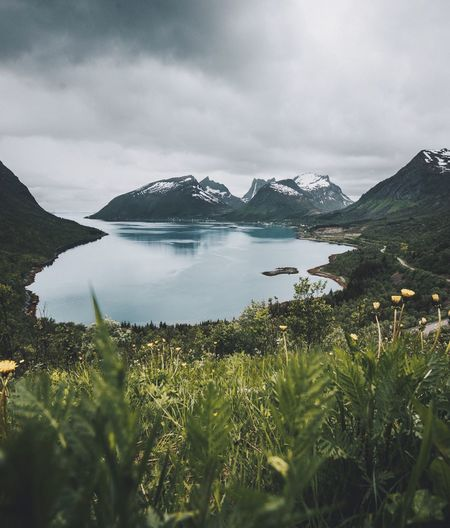 Oh Norway... Beauty In Nature Nature Mountain Tranquil Scene Water Scenics Sky Tranquility Lake Outdoors No People Cloud - Sky Day Grass Landscape Weather Sea Coastline Power In Nature Forest High Angle View Adventure Travel Destinations Senja  Norway