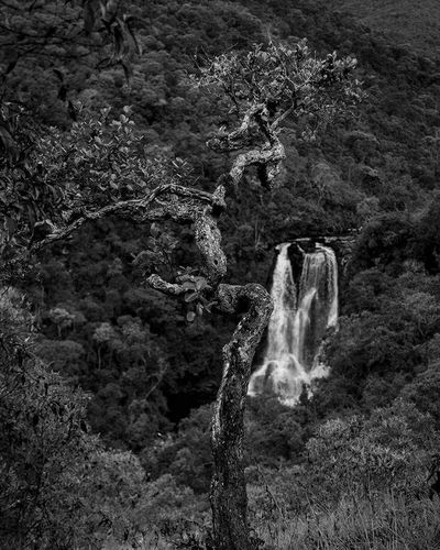 BW_photography EyeEm Selects #photography Waterfall