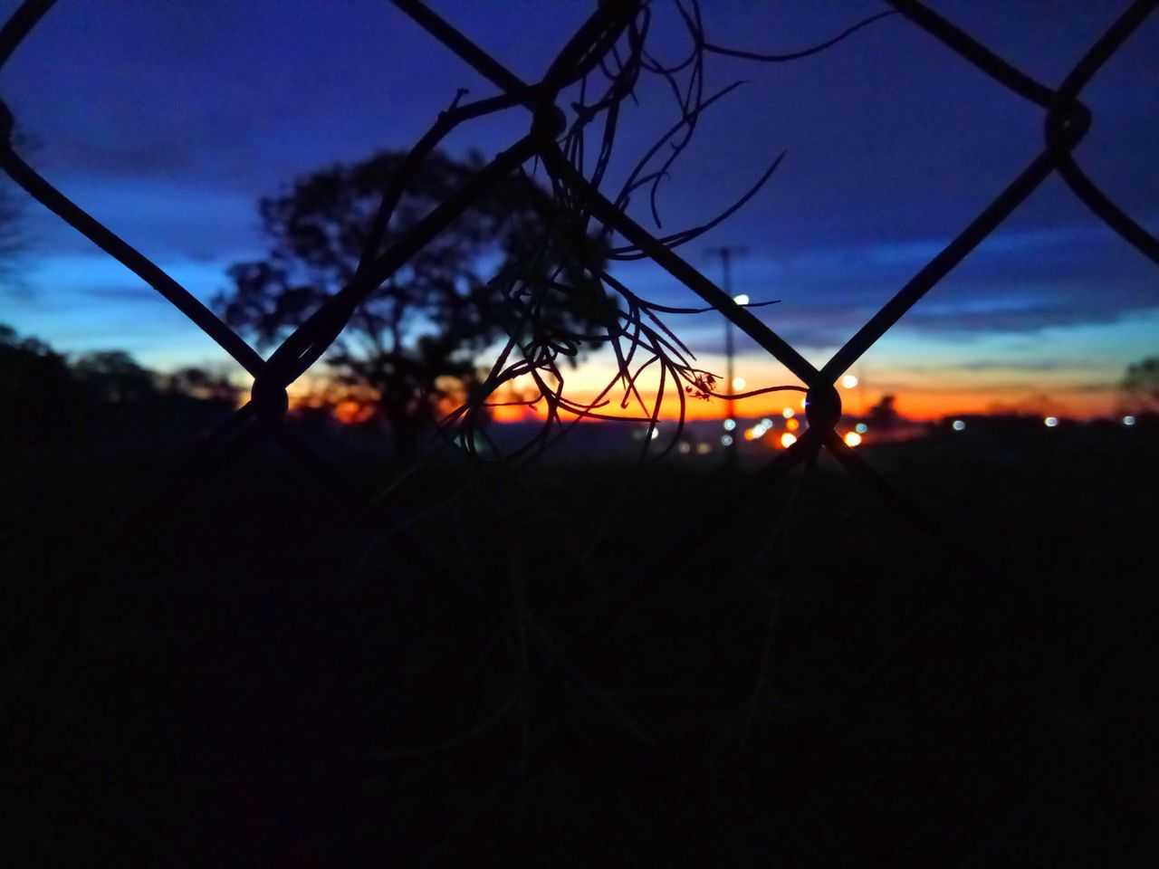 sunset, silhouette, sky, dusk, nature, no people, outdoors, beauty in nature, landscape, close-up, tree, scenics, day