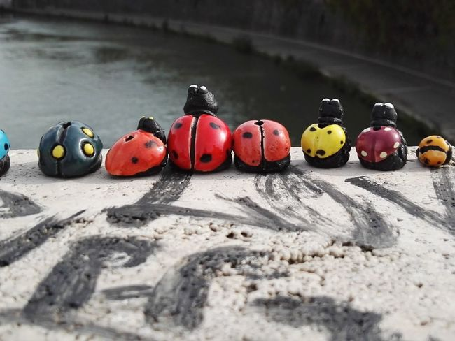 Outdoors Close-up No People Ladybird Ladybirds Riverside Riverside View River Tiber Rome, Italy Sculpture Toys Family Time View From Above River View
