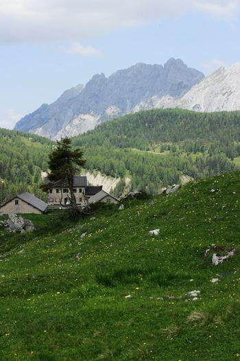 Landscape Mountain Sauris