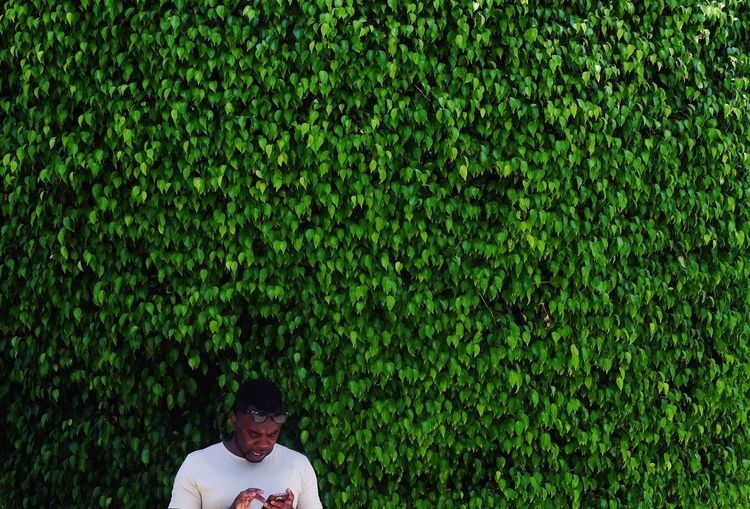 Man using mobile phone against ivy plants