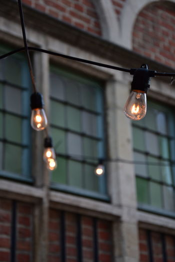 Light bulbs in Gent Architecture Building Building Exterior Built Structure Ceiling Close-up Electric Lamp Electric Light Electricity  Focus On Foreground Glowing Hanging Illuminated Light Light - Natural Phenomenon Light Bulb Lighting Equipment Low Angle View No People Outdoors Wall - Building Feature Window