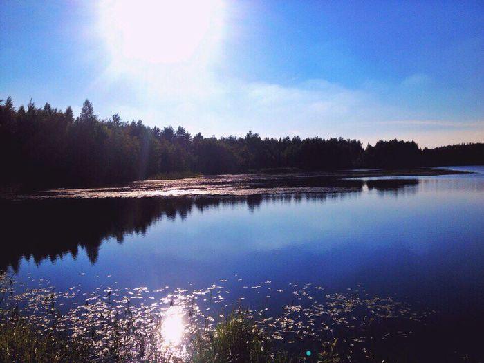 Summertime,2016🌞💫☀️ Sky Nature Water Lake Forest Day Sun Summer Summertime Followme Follow4follow Follow Like Like4like Likeforlike