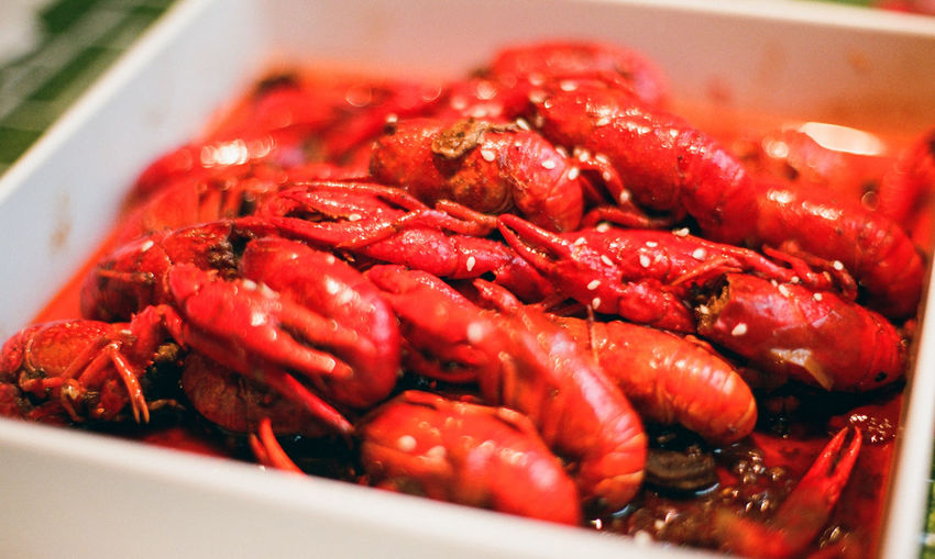 Hot and Spicy Crayfish Claw Close-up Day Food Food And Drink Freshness Healthy Eating Lobster No People Outdoors Red Seafood