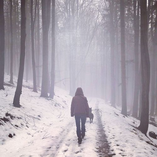 Adult Adults Only Beauty In Nature Cold Temperature Day Fog Forest Landscape Nature One Person One Woman Only One Young Woman Only Only Women Outdoors People Rear View Snow Spooky Tree Warm Clothing Winter WoodLand Young Adult Be. Ready.