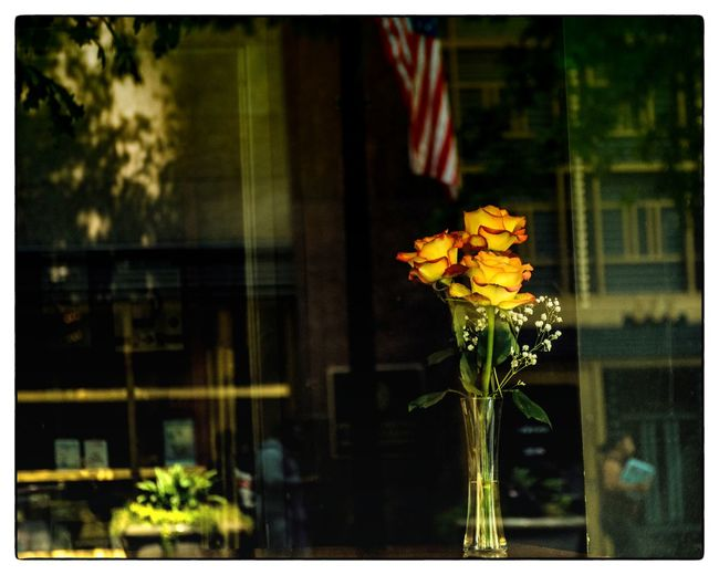 In the window... Check This Out Reflection Reflection_collection Reflection Photography Windows Window Reflections Flowers Flowerporn Flower Collection Vase Urban Urbanexploration Walking Around The City  City Nikon Nikonphotography Eyeemphotography EyeEm Best Shots Coolpic