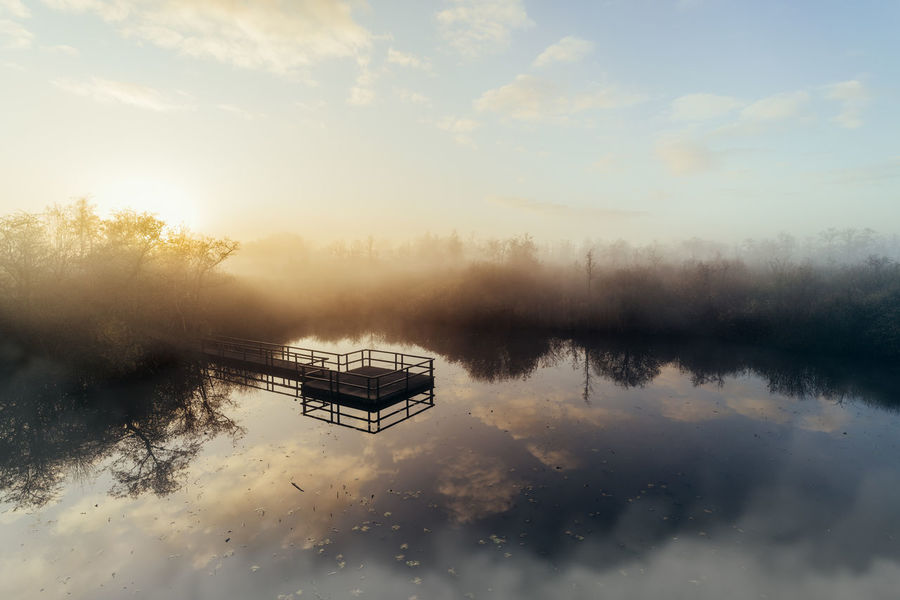 I woke up early to see the sun come up over this foggy swamp. So beautiful! EyeEmNewHere Morning Nature Swamp Beauty In Nature Fog Foggy Foggy Morning Foggy Morning Over The Water Lake Outdoors Reflection Scenics Sky Sun Sunrise Tranquil Scene Tranquility Viewpoint Water Waterland