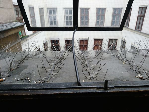 One of the windows at my school. Looking Out Of The Window Looking Out Looking Outside Go Away Stay Away Open Window Unwelcome Architecture Architectural Detail Your Design Story The Street Photographer - 2016 EyeEm Awards