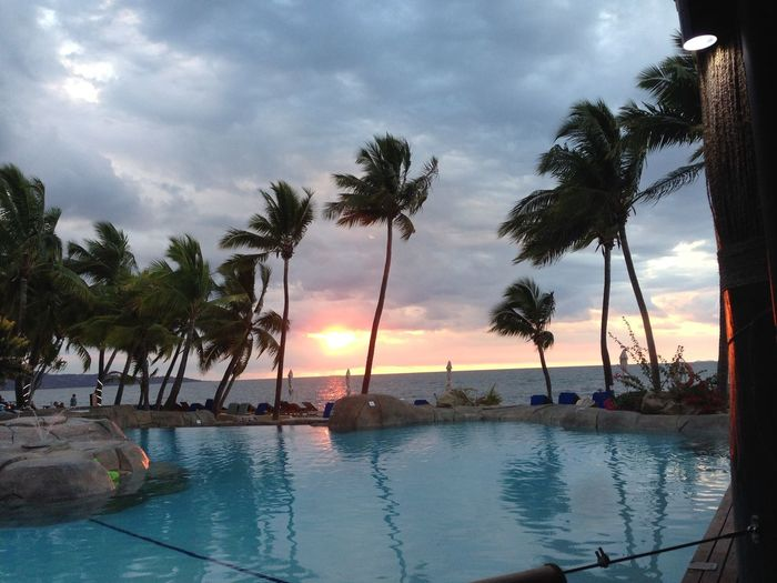 a view over the pool Fiji Islands Fiji Photos Beach Beauty In Nature Cloud - Sky Day Horizon Over Water Nature No People Outdoors Palm Tree Reflection Scenics Sea Sky Sunset Swimming Pool Tranquil Scene Tranquility Tree Tree Trunk Water
