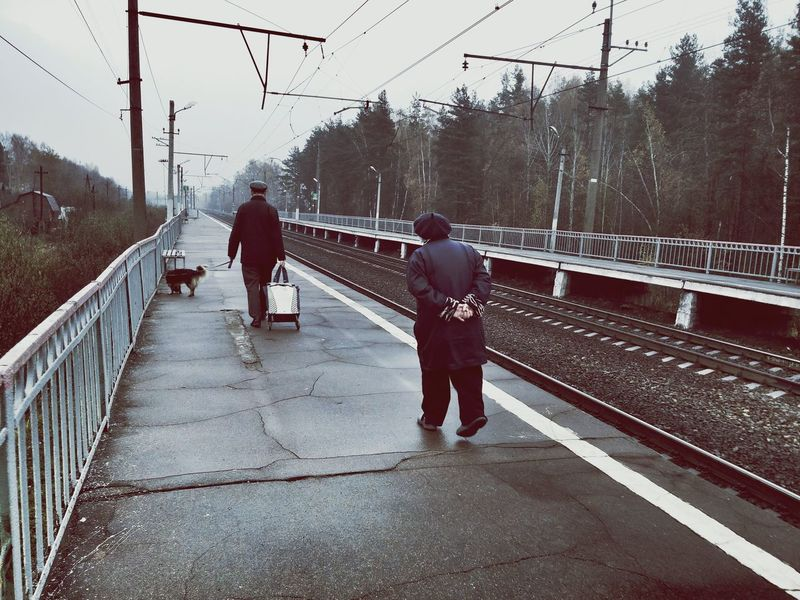 Dog Pet Autumn Sedness Railway Transport Transportation Real People Railroad Track Connection Walking Two People Railroad Station Platform The Way Forward Togetherness Nature Adult People