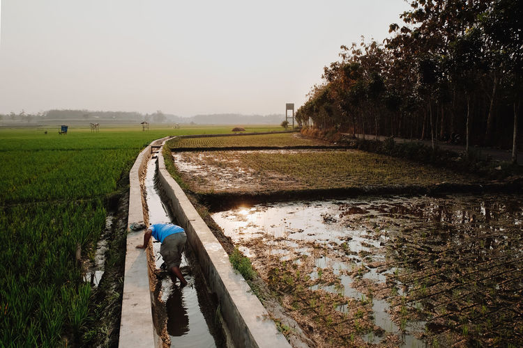Rear view of man i gutter by agricultural field against sky