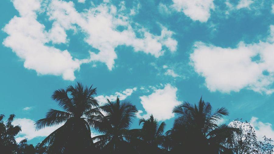 Good morning guy's ?Myhometown Langkawi Island Malaysia